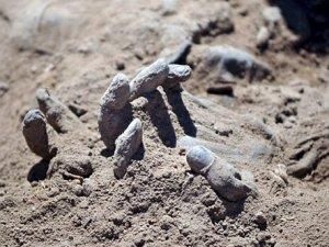 Tikrit'te askerlerin gömüldüğü toplu mezarlar bulundu