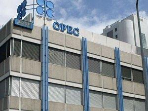 OPEC'in pazar payı artacak