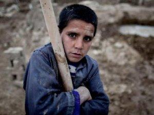 CHP'li Umut Oran: Türkiye'de 1 milyon çocuk işçi var