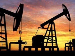Petrol fiyatı bu yılın en yüksek seviyesinde