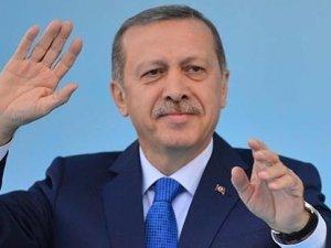 TFF, Erdoğan için saha kapatma cezasını erteledi
