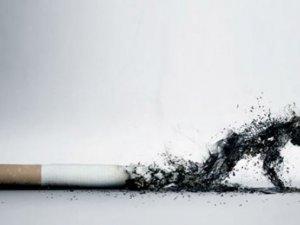 Dünyada her yıl 6 milyon kişi sigaradan ölüyor
