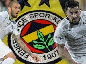 Fenerbahçe timsahların peşinde