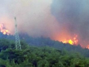 Ciğerimiz yanıyor: Mersin'de evler boşaltıldı