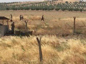 Suriye sınırına elektronik duvar