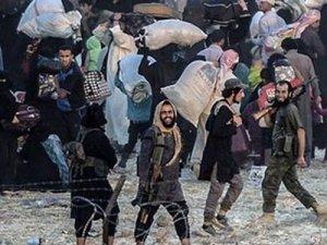 Son gümrük düzenlemeleri IŞİD'e yaradı!