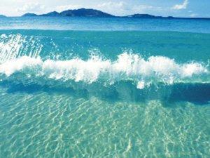Yüzme suları takip altında