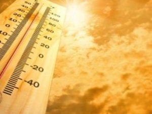Aşırı sıcaklar yeni hastalıkların habercisi