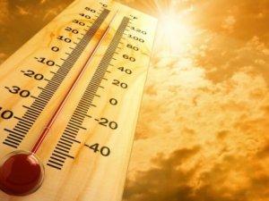 '2015, 4 bin yılın sıcak rekorunu kırdı'