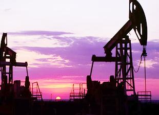 TPAO'ya iki adet petrol arama ruhsatı