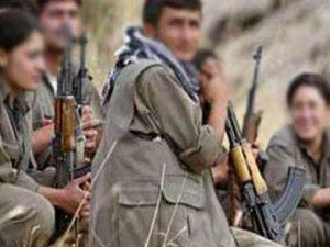 Şemdinli'de 7 terörist öldürüldü!