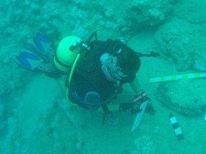Mersin'de önemli keşif