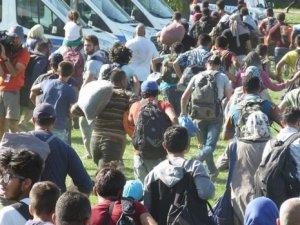 Hırvatistan'da sığınmacı akımı