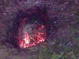 Ormanda yanmış ceset bulundu