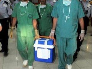 Türkiye'de 28 bin 635 hasta organ bağışı bekliyor