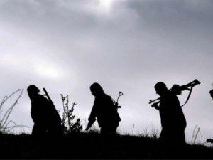 TSK: 10 PKK'lı terörist öldürüldü!