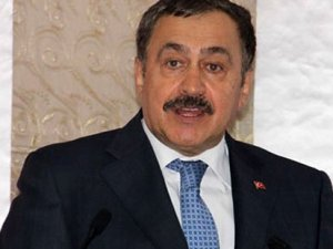 Orman ve Su İşleri Bakanı: İğneada'ya nükleer santral yok