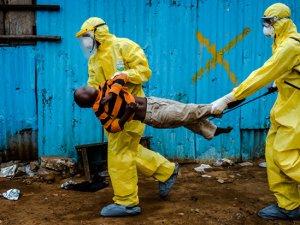 Ebola virüsü sanılandan dirençli çıktı