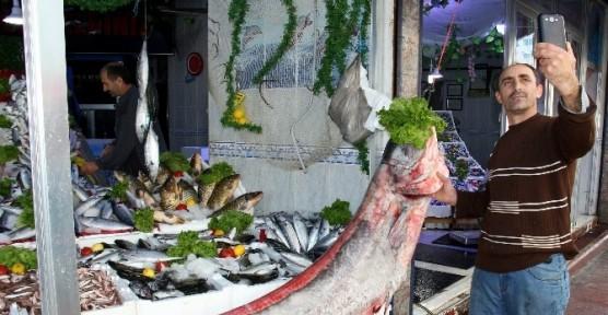 Sazana niyet, yayın balığına kısmet