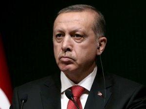 Erdoğan'dan o mektubu yazan akademisyen ve aydınlara: Ben bunlara 'mankurt' diyorum