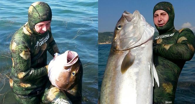 Devasa balığı zıpkınla yakaladı