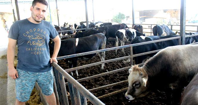 Biriktirdiği okul harçlığı ile kuzu alarak başladı, şimdi çiftlik sahibi