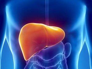 Hepatit B'nin bulaşma yollarının öğrenilmemesi yayılmayı artırıyor