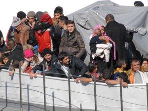 129 sığınmacı yakalandı