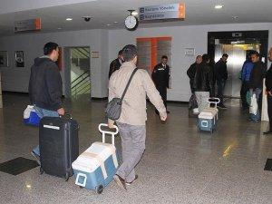 Çankırı'da beyin ölümü gerçekleşen kadının organları 6 hastaya umut oldu