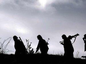 Mardin'de 2 PKK'lı öldürüldü