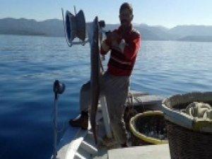 Oltasına dev deniz yılan balığı takıldı