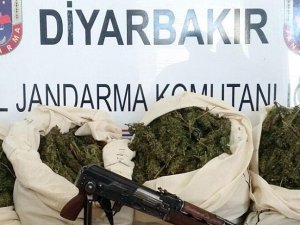 Diyarbakır'da uyuşturucu operasyonunda 73 kilo esrar ele geçirildi