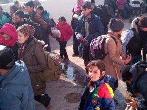 Aydın'da 277 göçmen yakalandı