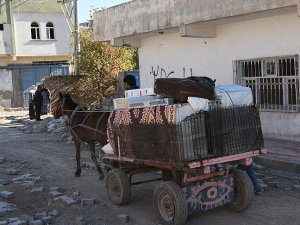 Nusaybin'deki 4 mahallede aileler göç ediyor