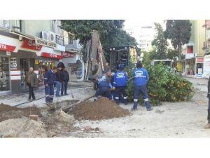 Seyhan Belediyesi'nin Ağaç Duyarlılığı