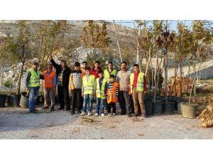 Gelincik Tepesi'ne 150 ağaç dikildi