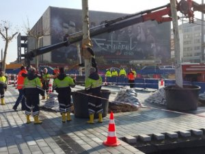 Taksim Meydanı'na ilk ağaç dikildi
