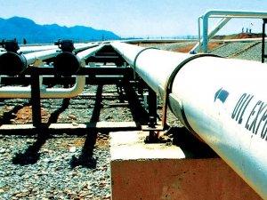 'Petrol fiyatlarındaki düşüş faiz artışını erteletmez'