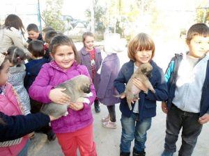 Miniklerden Hayvan Barınağına Anlamlı Ziyaret