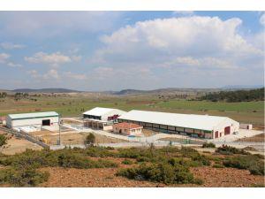TKDK'dan süt sektörüne 42 milyonluk proje