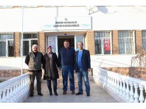 Sivas'ta Şap Hastalığı 11 Hayvanı Telef Etti