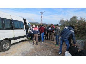 Ayvacık'ta 386 Kaçak Yakalandı