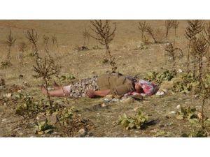 Engelli kadının cesedini arazide koyun otlatan çoban buldu