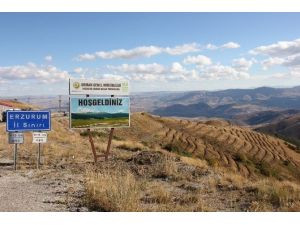 Erzurum-aşkale Kop Dağı Ağaçlandırma Çalışmaları Devam Ediyor…
