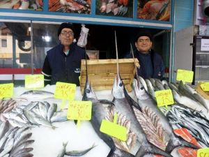 Mudanya'da Kılıç Balığı Bereketi