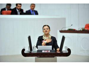 CHP'li Basmacı'dan Tarım Bakanlığı'na Soru Önergesi