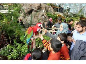 Suriyeli Yetimler Tropikal Kelebek Bahçesi'ni Gezdi