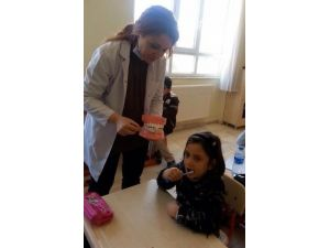 Elazığ'da Diş Hekimleri, Öğrencileri Diş Taramasından Geçirdi