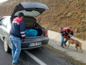 Elazığ'da 7 Kilo Esrarla Yakalanan 2 Şüpheli Tutuklandı