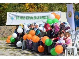 Niğde Fidan Dikiminde Türkiye Rekoru Aldı
